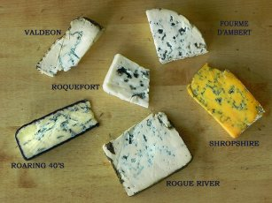 BlueCheeseVarieties-Storybo