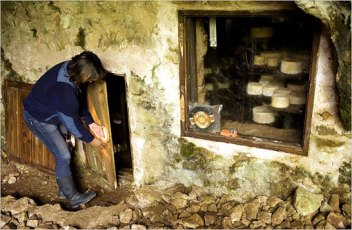 raquel-viejo_cheese_cave_asturias_spain